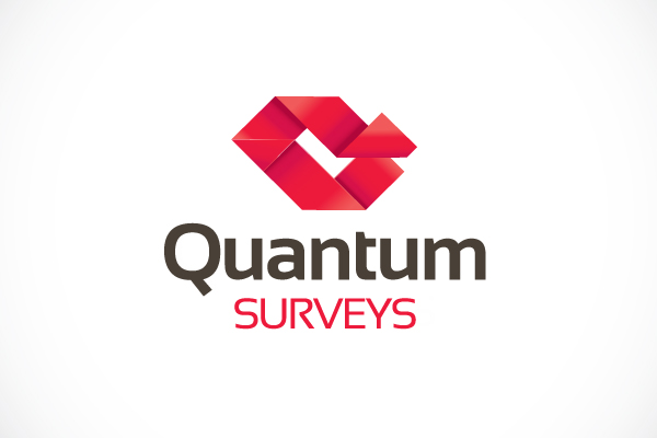Quantum Surveys - Logo Design Example